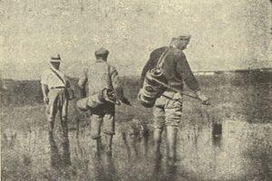 Καταπολέμηση Ελονοσίας 1930-1940
